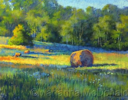 Buckeye Meadow Hayrolls