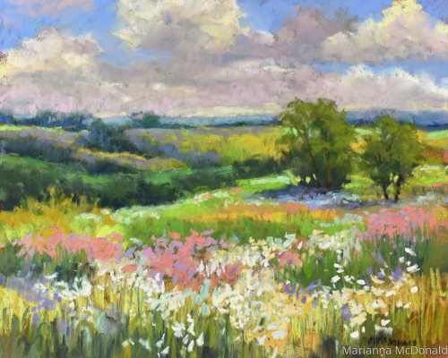 Wildflower Fields 2020