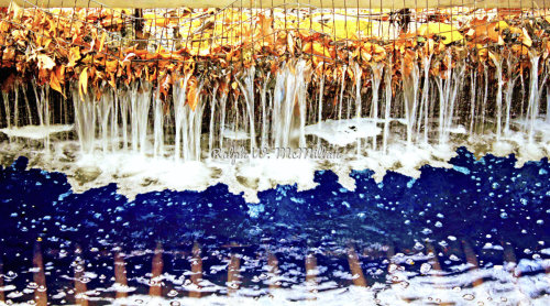 Dripping leaves # 1