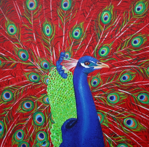 Peacock (Crimson)