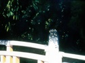 Impressionism Oil painting on canvas, a wooden bridge near the Meiji Jinku Shrine (thumbnail)