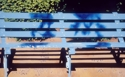Oil painting on linen of a park bench in Aurillac, France (thumbnail)