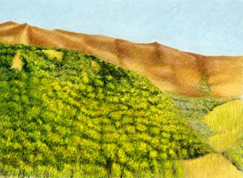 Oil pigment sticks on paper of landscape in the Cantal Mountains in south-central France (large view)