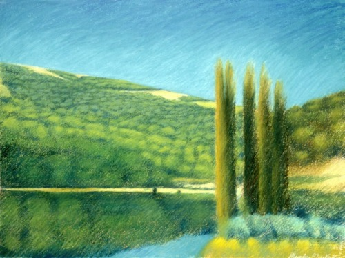 Reflections on lake in south-central France (Cat. No. 208)