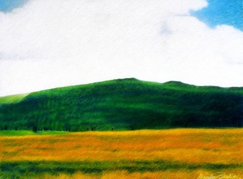 Landscape in Aubrac Mountains (Cat. No. 411)