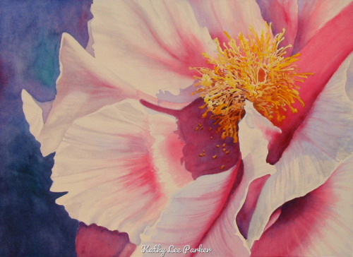 Pink Peony by Kathy Lee Parker Fine Art