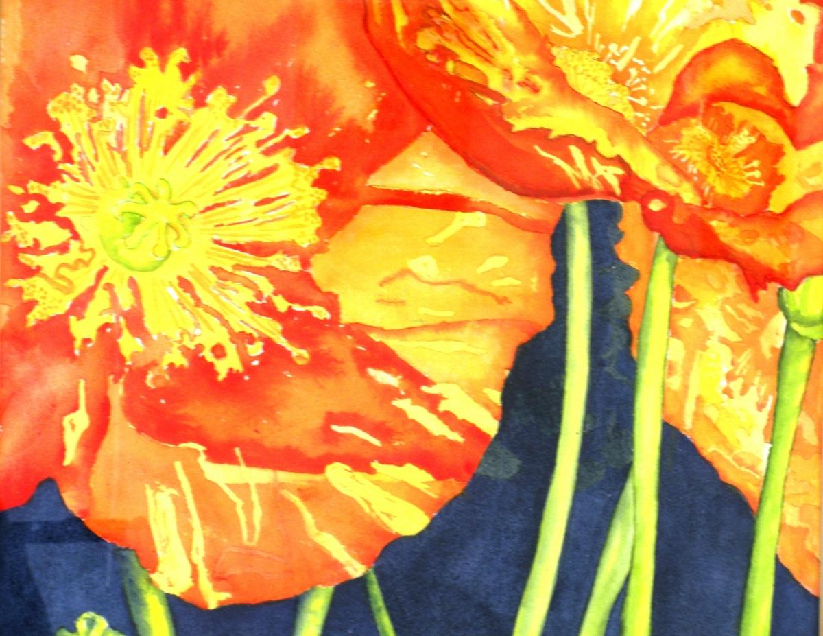 Ranunculus 2 (large view)
