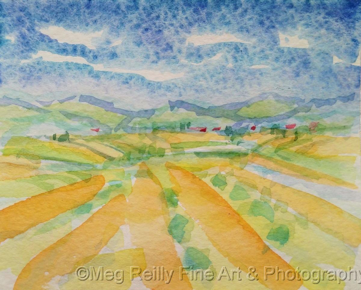 Fertile Fields #413 (large view)