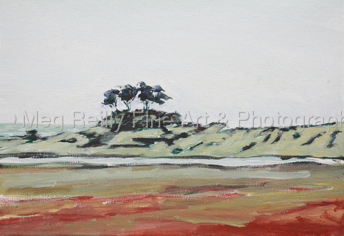 Cypress Seascape by Meg Reilly Fine Art & Photography