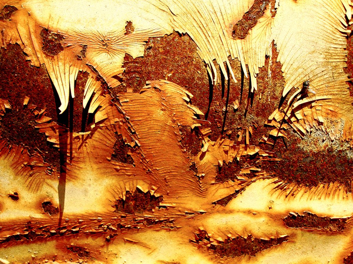 Metalmorphosis #1540 (large view)