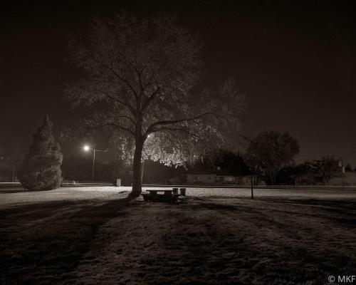 Park 5 by Martin Fahlen