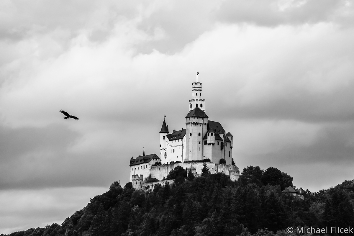 Marksburg Castle with Bird (large view)