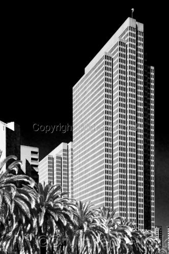 Embarcadero And Palms