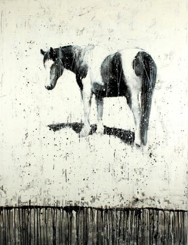 Gros Ventre Horse