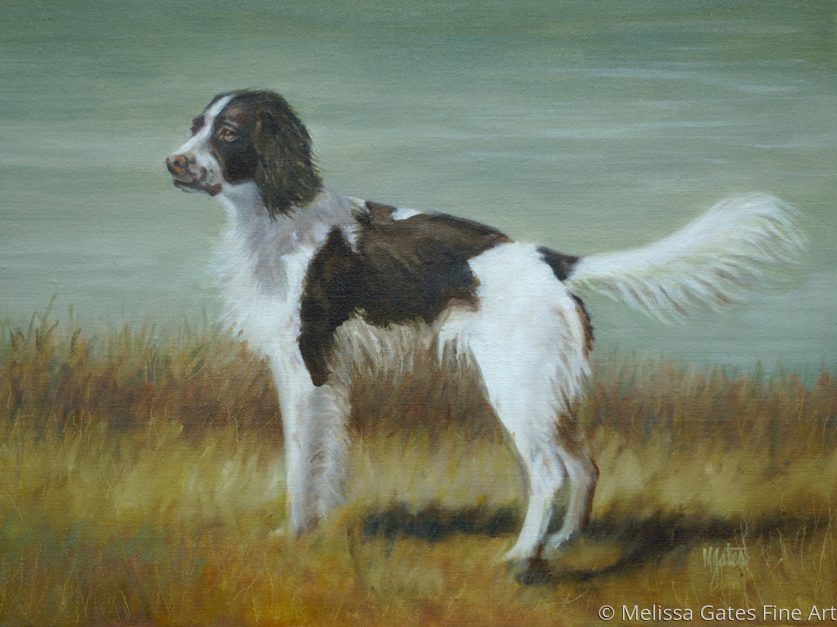 MG147 Commissioned Pet Portrait (large view)