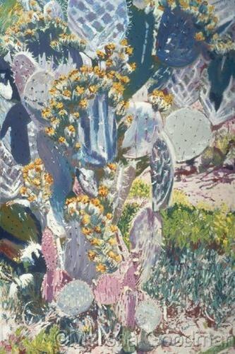 Ruth Bancroft  Botanic Gardens III (large view)
