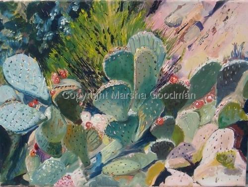 Bancroft Cactus  New (large view)