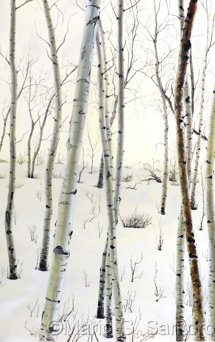Birch In Winter ~ Painting Study (large view)