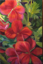 Red Flowers (thumbnail)
