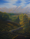Napa Valley Farmland (thumbnail)