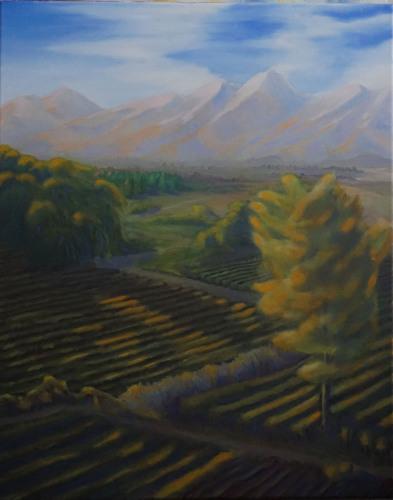 Napa Valley Farmland