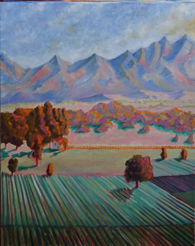 Napa Valley Farmland Study