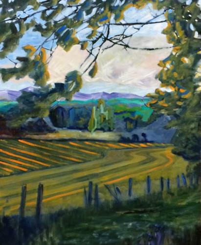 Landscape in Sonoma