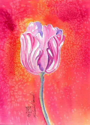 Tulip Season (large view)