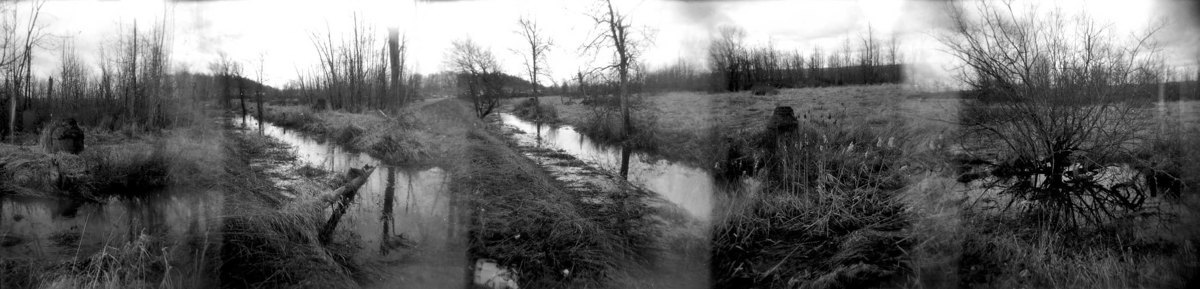 Floodplain (large view)