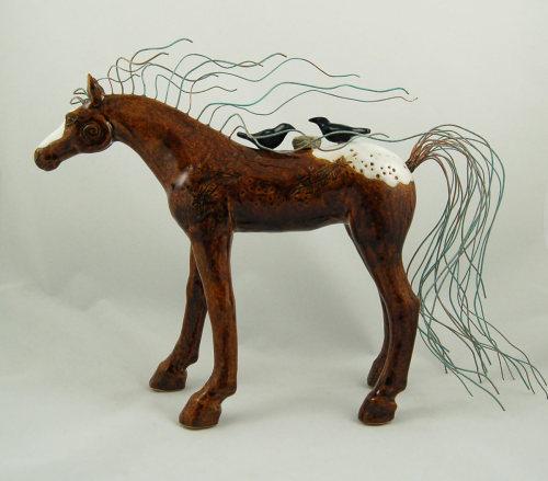 Appaloosa Shelter Horse