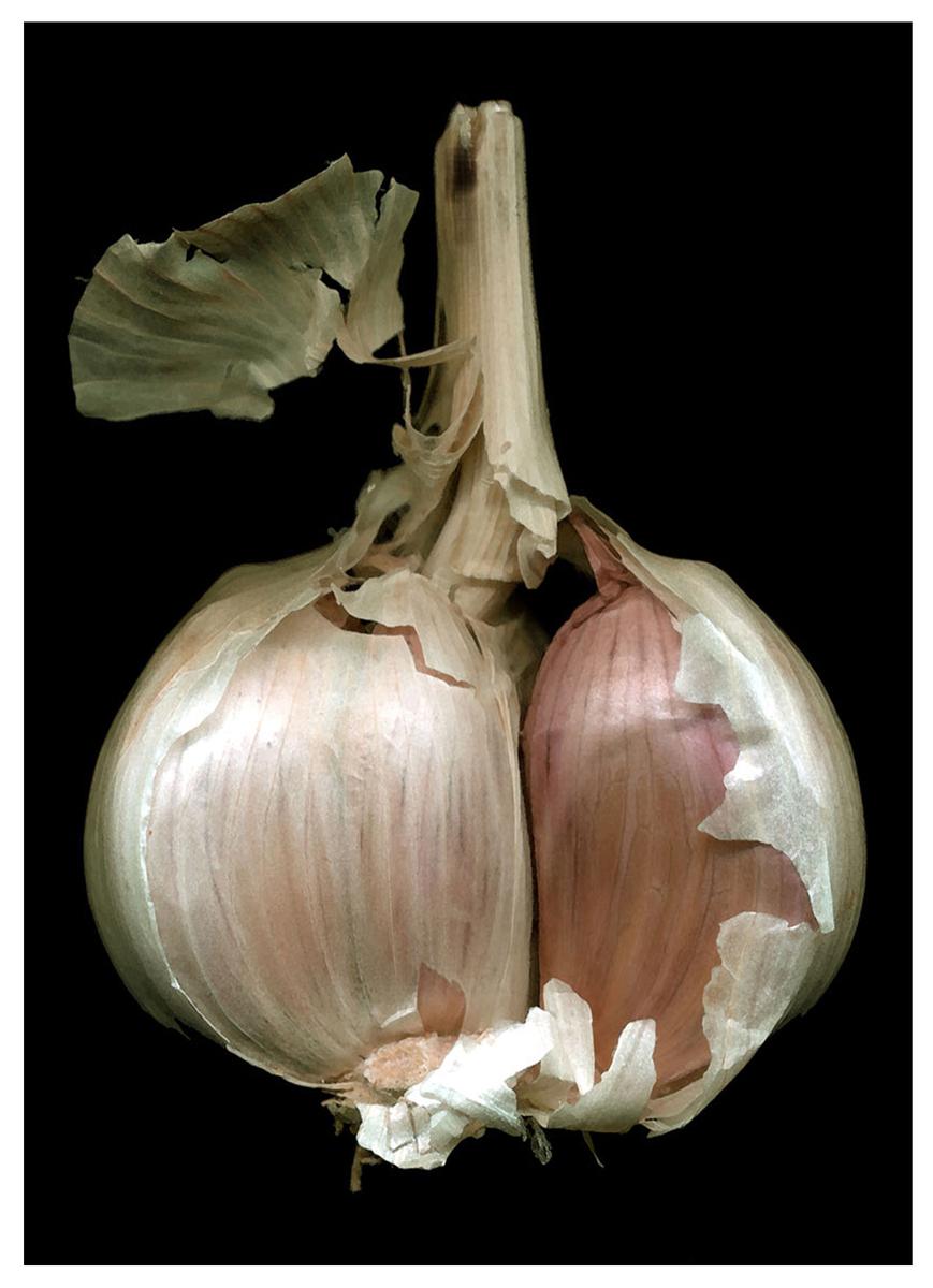 Gorgeous Garlic (large view)