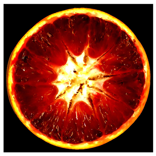 Blood Orange by MMORGULIS STUDIO  .  FEATURING THE ART AND DESIGN OF MICHAEL MORGULIS