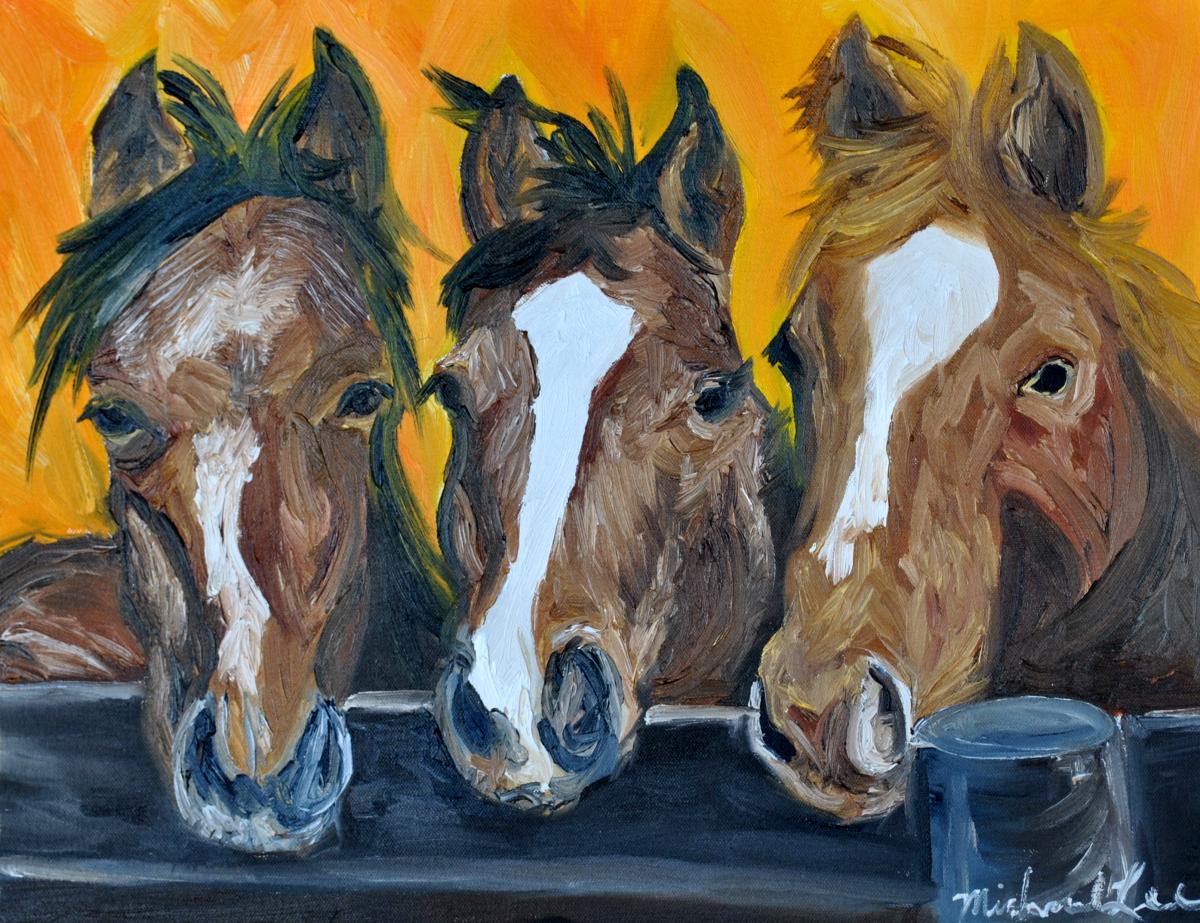 Horses, Horse, Palamino horses, Stallions, Race Horses, multiple horses (large view)