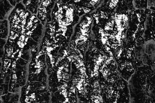 Digital Photo Design Texture 3.2