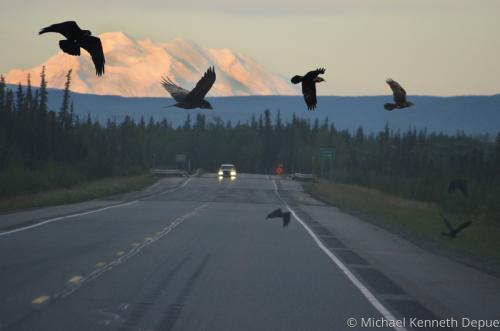 Road to Denali