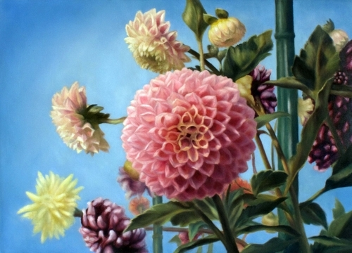 Dahlias in Bloom (large view)