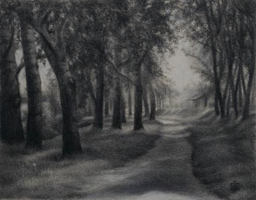 Dappled Light by Melissa Imossi