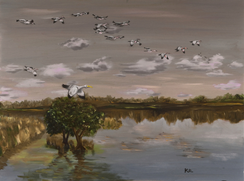 Ibis Returning At Dusk - Wakodahatchee Wetlands, FL