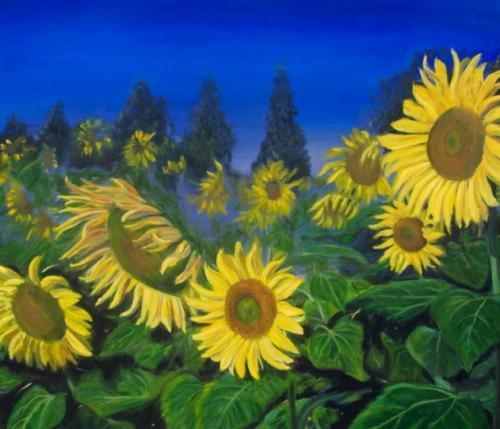 Sun Flower Study I
