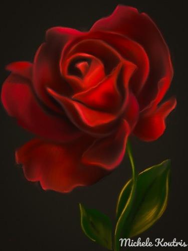Red Empress Rose