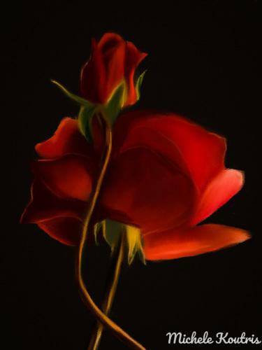 Garden Beauty Roses