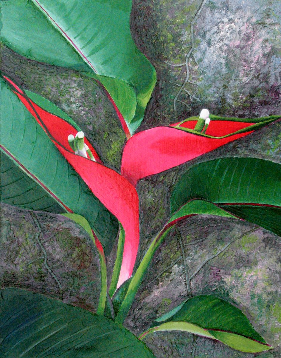 Heliconia (large view)