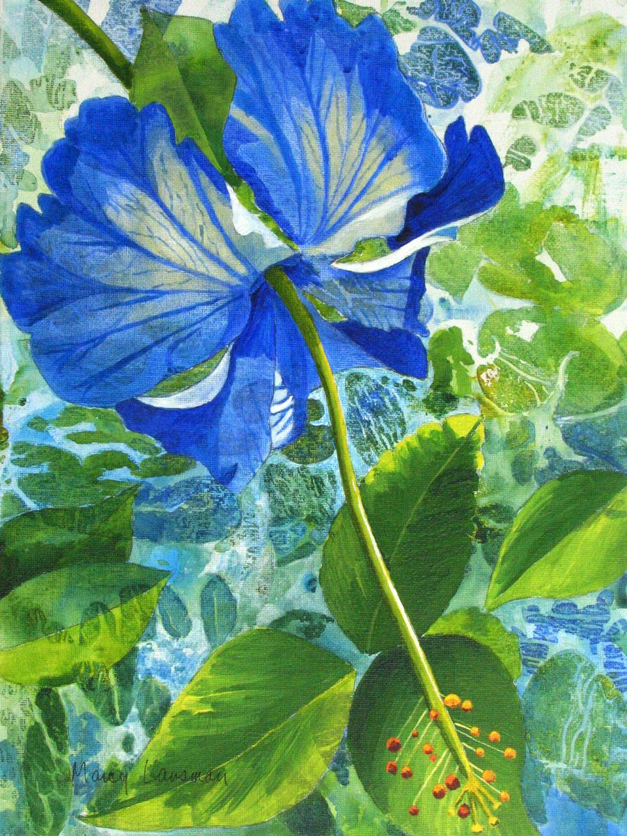 Blue Hibiscus (large view)