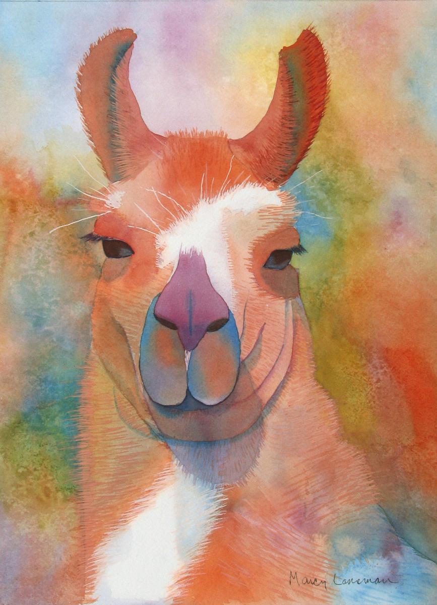 Llama (large view)