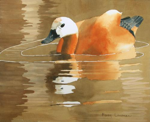 Reflections by Marcy Lansman