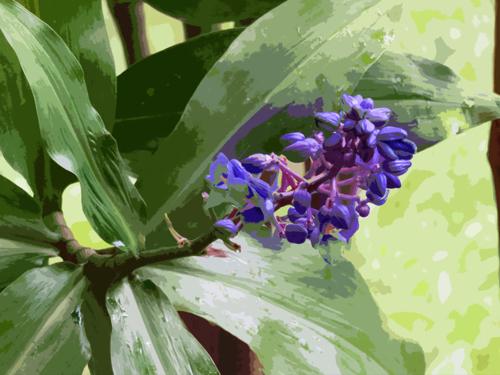 Island Flower 3