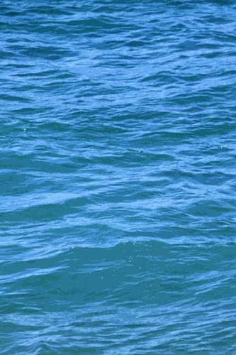 Ocean 25
