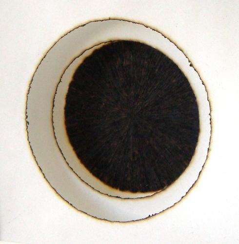 Burn Image (large view)