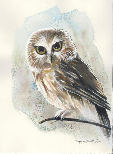 Painting-Watercolor-Owl