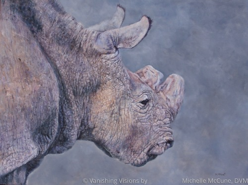 Sudan - Facing Extinction by Vanishing Visions by                     Michelle McCune, DVM